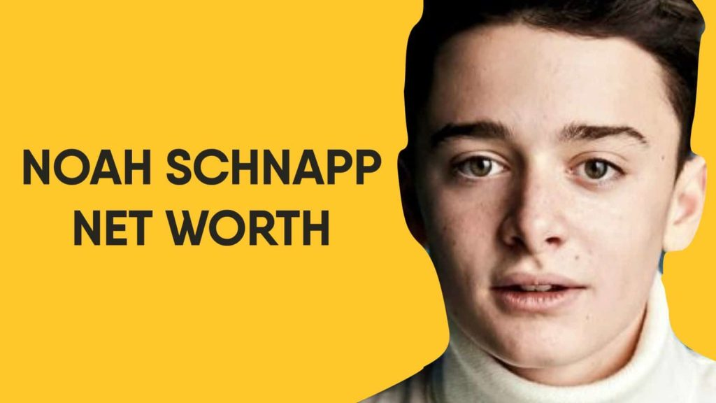 Noah Schnapp Net Worth